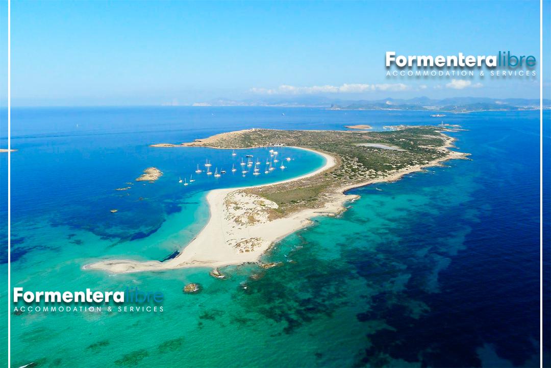 FORMENTERA 2019: vacanze bestiali con Formentera Libre ...
