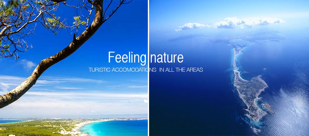 Naturaleza-que-atrapa-las-emociones-ENG